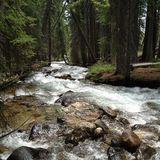 Redfish Lake Loop Trail - Idaho Trails   AllTrails.com