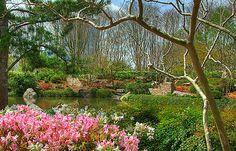 Hermann Park Japanese Gardens (HDR) by Knowsphotos, via Flickr