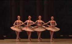 Ballet Gif, Ballet Dance Videos, Dance Choreography Videos, Ballet Class, Ballet Dancers, Nike Dance, Ballerina Photography, Ballet Pictures, Dance Poses