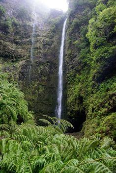 Caldeirão Verde Levada Wanderung Madeira-5417