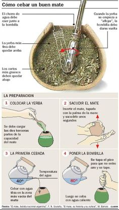 """Organic Yerba mate tea has many health benefits. Learn about what it is and how to consume it. In South America, it is referred as """"The Drink of the Gods. Argentina Food, Argentina Recipes, Argentina Culture, Yerba Mate Tea, Thinking Day, Spanish Food, Teaching Spanish, Good To Know, Tea Time"""
