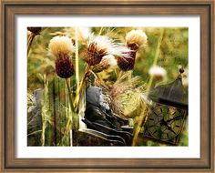 Flowers #Framed #Print featuring the photograph If Only by Judi Saunders. Choose your style and color of frame from many choices.