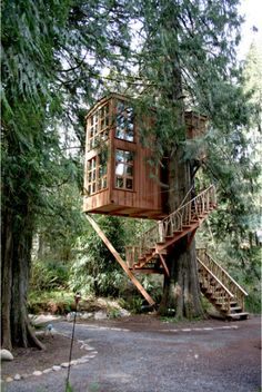Dream treehouse/ vacation in the woods