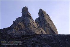 Donkey's Ears peaks of Mount Kinabalu just after sunrise :) Mount Kinabalu, Sea Level, Borneo, Natural World, Ears, Sunrise, Exotic, Mountains, Places