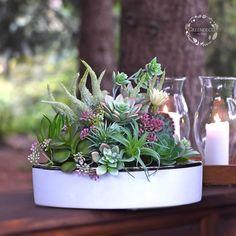 Silk flowers. Silk Flowers, Decoration, Plants, Flowers, Decor, Deko, Embellishments, Planters, Decorating