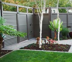 Used Corrugated Metal as Fencing -paint the wood and metal so it's monotone, pretty