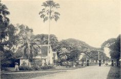 entrance to the botanical gardens circa 1924 (fr Andrew Jeffrey's photos)
