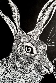 Hare Linocut Print by Rowanne Anderson http://www.etsy.com/uk/people/Rowanne?ref=pr_profile http://www.rowanneanderson.com/ Tags: Linocut, Cut, Print, Linoleum, Lino, Carving, Block, Woodcut, Helen Elstone, Animals, Hare, Rabbit