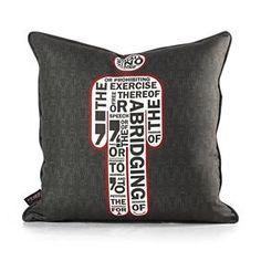 Modern Graphic Print Pillows| Modern Furnishings | 3D Decorative ...