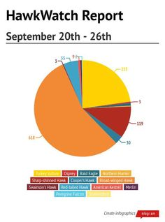 #HNCHawkWatch Report September 20th through 26th #HitchcockNatureCenter #LoessHills