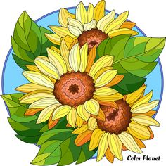 Sunflower Drawing, Sunflower Art, Colouring Pages, Coloring Books, Easy Mosaic, Paisley Art, Happy Colors, Paint Designs, Canvas