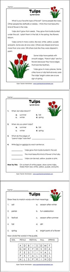 A perfect reading comprehension worksheet for springtime! 2nd Grade Reading Passages, Reading Comprehension For Kids, Comprehension Strategies, Reading Response, Reading Skills, Guided Reading, Teaching Reading, Teaching Aids, English Lessons