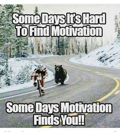 All We need to succeed in our life is Motivation. So, We are back with a massive collection of Inspirational Memes. There is 91 Motivational memes on this list Stupid Funny, The Funny, Funny Jokes, Funniest Memes, Funny Humour, Funny Cartoons, Pranks Hilarious, Memes Humor, Clean Funny Memes