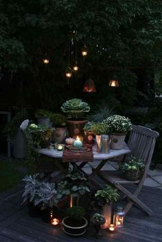 Romantic spot in the night time garden.