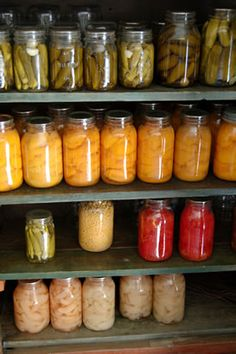 "How to lacto-ferment/preserve foods || lacto-fermentation produces more enzymes in the food as well as good bacteria and lactic acid. Having those ""good"" bacteria in your GI tract is very important to ones health. You should eat some form of lacto-fermented condiment or side with every meal to help aid digestion. Proper gut health is so important to your overall health, as most diseases and health problems stem from poor health of your GI tract."