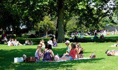 Picnic in Green Park, London