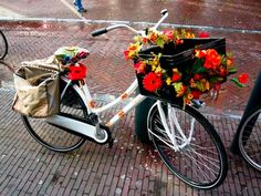 Pimped bicycle...Amsterdam style