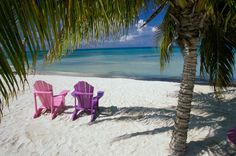 White sand and palm trees.....with low humidity(:>)...my hearts desire!!!! ARUBA