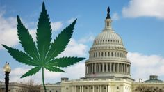 Washington D.C. Council Approves Cannabis Decriminalization Proposal, Heads to Mayor