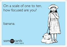How focus are you!?
