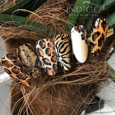 Installation of acrylic or gel nails - My Nails Diy Nails, Cute Nails, Pretty Nails, Manicure, Tiger Nails, Leopard Nails, Tiger Nail Art, Perfect Nails, Gorgeous Nails