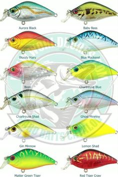 Salmo Skinner Floating 10 cm 12 cm Wobbler Fishing Lures Predator Fishing Pike