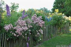 Сад Мориса Вергота | Ландшафтный дизайн садов и парков
