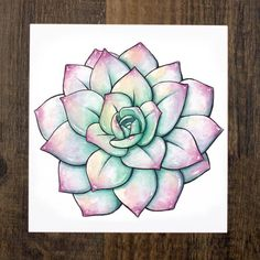 Pastel Colored Succulent Art Print
