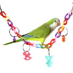 Parrot Bird Toys Acrylic Bird Bridge Chew Swing Ladder Scratcher Toys for Parrot Parakeet Budgie Pet Bird Accessories Cockatiel Toys, Parakeet Toys, Parakeet Bird, Parrot Pet, Parrot Toys, Parrot Bird, Cute Birds, Small Birds, Acrylic Bird Cage