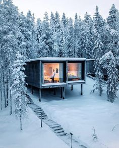 Who doesn't love a good tree house ? Swipe left to see some unreal scenes from Northern Lights Ranch. Northern Lights Ranch, Treehouse Hotel, Sea Container Homes, Casas Containers, Snowy Forest, Cool Tree Houses, Design Exterior, Tiny House Design, Cabins In The Woods