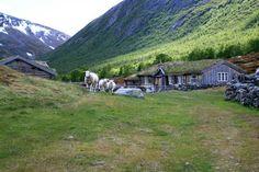Keski-Skandinavian vaellusreitit - Harri Ahonen - #kirja #keskiskandinavia #vaellusreitit #vaeltaminen #skandinavia #gammelsetra