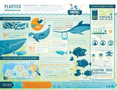 Marine Plastic: an infographic - Surfd.com  A creative eco design using animals in despair to generate sympathy in economical disaster. It'd better to link how this can affect human and the Earth such as planktons die and oxygens will no longer be produced.
