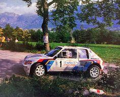 Peugeot T16 Andrea Zanussi Rally Limone Piemonte 1986