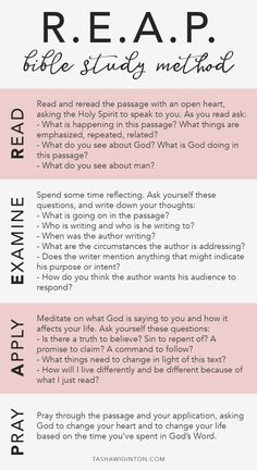 How To Study The Bible: REAP Bible study method. Whether you're a beginner or just looking to dive deeper into scripture, R. is an easy way to study the Bible. Bible Study Plans, Bible Study Notebook, Bible Study Tips, Bible Study Journal, Scripture Study, Bible Lessons, Bible Guide, Devotional Journal, Free Bible Study