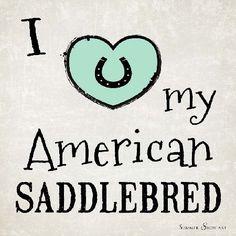 I Love My American Saddlebred Horse by Summer Snow Art