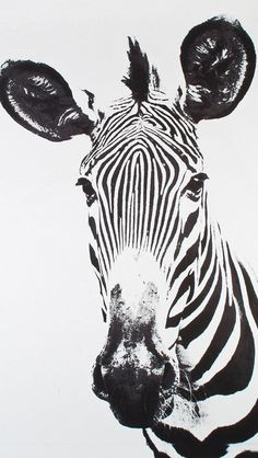 5581343eeb150 Tylinek Zebra Framed Art by Natural Curiosities is on trend with black and  white stripes! This photographic print is sure to be a showstopper on any  wall.