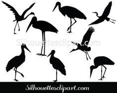Stork Vector Graphics