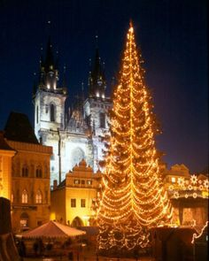 Albero di Natale - Praga