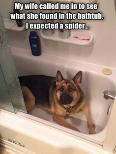 What I want to find in my tub!