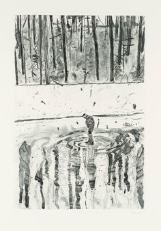 Peter Doig - 'Blotter' 1996 Etching and aquatint on paper image: 288 x 195 mm on paper, print Peter Doig, Art And Illustration, Alluka Zoldyck, Water Artists, Kunst Online, Art Graphique, Landscape Art, Painting & Drawing, Encaustic Painting