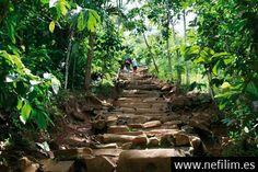 Gunung Padang la pirámide primordial