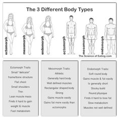 http://thescienceofeating.com/2015/02/22/three-body-types-explained/