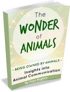 Straight From The Animal's Mouth - Faye Rogers - Animal Communication - New Zealand