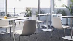Enea Lottus Side Chair with Enea Lottus Tables