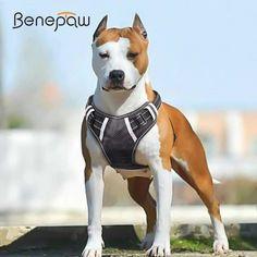 Arnés Ajustable Perro H reflectante para perros pequeños a medianos; cuello que empareja