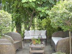 The terrace of the holiday rental Maison de village at Courthézon ,Vaucluse - photo 9375 Credits Maison en Provence (TM) / The owner