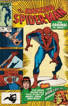 The Amazing Spider-Man (1963) - #259 with Other Artist !!!!!!