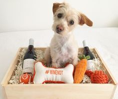 The perfect gift for the dog lover in your life, plus every crate helps 2 animals find a forever home. This gift crate includes two bottles of ONEHOPE California Pinot Noir for humans, along with Bixby treats, tennis ball, carrot toy, squeaky bone toy, and shampoo for lucky pups.  PC: @wagsandwalks