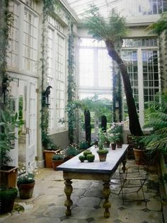 Ambiance jardin d'hiver