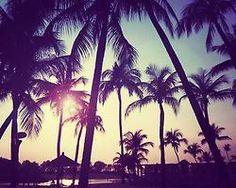 sweet summer ♡
